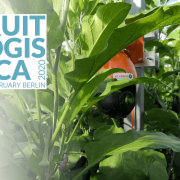 FruitLogistica 2020